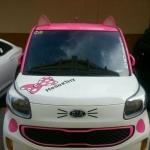 หูแมวติดรถ หูกระต่ายติดรถ น่ารักฟรุ้งฟริ้ง ฮิตในเกาหลีและญี่ปุ่น ทนแดดทนฝน น้ำหนักเบา