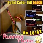 สายจูงสุึนัขและพร้อมปลอกคอ LED สีส้ม