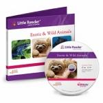 บทเรียนเพิ่มเติม เสริมพัฒนาการเด็ก Exotic and Wild Animals Category Pack