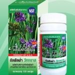 สารคลอโรฟิลล์เข้มข้น Wheatgrass & Alfalfa ( วีทกราสและอัลฟัลฟ่า ) 120 แคปซูล