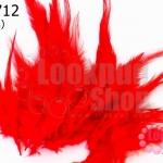 ขนนก(ก้าน) สีแดง (20 ชิ้น)