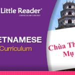 โปรแกรมเสริมสร้างพัฒนาการเด็ก Vietnamese Content (ส่งฟรี EMS)