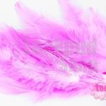 ขนนก สีชมพู (20ชิ้น)