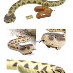 งูเลื้อยรีโมทย์บังคับ ขนาด 4*74 ซม