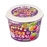 Kutsuwa eraser kit : ชุดทำยางลบ ผลไม้ (กลิ่นหอม) ใช้ไมโครเวฟ !!!ทานไม่ได้!!!