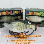 ตุ๊กตาปลาร้องเพลง ขยับได้ (มาใหม่) (ซิ้น 3 ชิ้น ราคาส่ง 650 บาทต่อชิ้น)