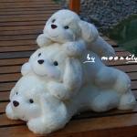 ตุ๊กตาหมาน้อย ตุ๊กตาง้อแฟน สีขาวน่ารักๆๆๆ ครบเซต พ่อแม่ลูก 3 ตัว  เป็นของขวัญให้แฟน ของขวัญง้อแฟนน่ารักๆๆๆ