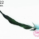 ขนนก(ก้าน) ไล่สี สีเขียวฟ้า ยาว 45 ซม. (1ชิ้น)
