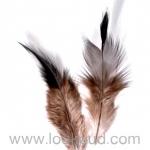 ขนนก สีน้ำตาล 20 ชิ้น 8 ซม.