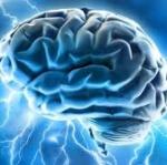DHA บำรุงสมอง ได้อย่างไร