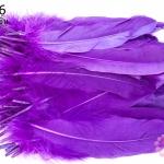 ขนนก(ก้าน) สีม่วง 100ชิ้น