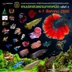 """"""" งานปลาสวยงามภาคเหนือ ครั้งที่ 2"""" วันที่ 4 สิงหาคม - 7 สิงหาคม 2559"""