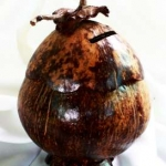 ออมสินในลูกกะลามะพร้าว Coconut Shell Saving