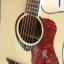 กีต้าร์ Guitar Kanon รุ่น PM18 N ไม้ Spruce thumbnail 4