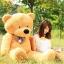 ตุ๊กตาหมียิ้ม สีน้ำตาลอ่อน ขนาด 1.6 เมตร thumbnail 1