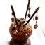 Coconut Shell Lamp thumbnail 1