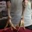 เจ้าสินเจริญทรัพย์ 134 พม่าหัวล่างพิเศษ thumbnail 5