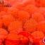 ปอมปอมไหมพรม สีส้ม 1ซม (100ชิ้น) thumbnail 1