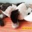 ตุ๊กตาหมาขำกลิ้ง มีเสียง (มาใหม่) สินค้ามีจำนวนจำกัด thumbnail 1