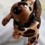 ออมสินกะลามะพร้าวรูปสุนัข Coconut Shell Savings (Doggy) thumbnail 1