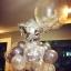 ลูกโป่งพลาสติกใส ทรงกลมแบน ไซส์ 24 นิ้ว - Clear PVC Balloons / Item No. TL-G041 (ไม่รวมลูกโป่งด้านใน) thumbnail 16