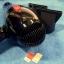 ไดร์เป่าผม ขนาดใหญ่ ไฟ 2200 วัตต์ รุ่น RCT-3900 thumbnail 3