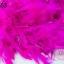ขนนก มีดิ้น สีชมพูช็อกกี้พิงค์ (1เส้น) thumbnail 1