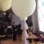 """ลูกโป่งกลมจัมโบ้ไซส์ใหญ่ 36"""" Latex Balloon RB WHITE 3FT สีขาว/ Item No. TQ-42847 แบรนด์ Qualatex thumbnail 39"""