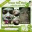 BFC Green Tea Mask มาร์คชาเขียว ฆ่าสิว หน้าใส ราคาปลีก 35 บาท / ราคาส่ง 28 บาท thumbnail 4