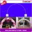 เสาลูกโป่ง ทรงโค้ง - Balloons Arch Curved shape ( B408A) thumbnail 1