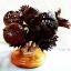 Coconut Shell Lamp, Rose Flowers (โคมไฟกะลามะพร้าว) thumbnail 2