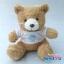 ตุ๊กตาพรีเมี่ยม โรงเรียนจันทศิริ ตุ๊กตาหมีนั่ง8.5นิ้ว ใส่เสื้อ+รีดโลโก้ 1ด้าน D5602Q0600 thumbnail 1
