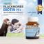 Blackmores Biotin H+ แบล็คมอร์ส ไบโอติน เอช+ บรรจุ 60 เม็ด thumbnail 2