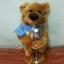 ตุ๊กตาหมีถือไมค์ มีเสียงเพลง เต้นได้ ปากขยับได้ (มาใหม่ล่าสุด) thumbnail 1