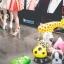 Set#26 บอลลูนสัตว์ Walking Balloon จำนวน 10 ใบ (คละแบบได้) อัดก๊าซฮีเลียมปลอดภัย ไม่ติดไฟ thumbnail 3