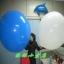 ลูกโป่งจัมโบ้ สีฟ้า ขนาด 36 นิ้ว - Round Jumbo Balloon Blue thumbnail 5