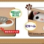 กระปุกออมสินแมวเหมียว thumbnail 4