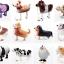 Cow Walking Balloons - วัวบอลลูน / Item No. TL-K017 thumbnail 5