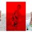 พร้อมส่ง ชุดว่ายน้ำคู่รัก บิกินี่ เซ็ต 3 ชิ้น colorful สีสันสดใส (บรา+บิกินี่+ผ้าคลุมซีทรู) thumbnail 6