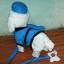 ตุ๊กตาหมาเดินได้ ส่ายก้นได้ มีเสียงเพลง (มาใหม่ล่าสุด) สีขาวใส่หมวก thumbnail 3