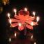 New! เทียนวันเกิดดอกไม้ มีเสียงเพลง-Music HBD Candle/ Item No. TL-N009 thumbnail 6