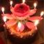 New! เทียนวันเกิดดอกไม้ มีเสียงเพลง-Music HBD Candle/ Item No. TL-N009 thumbnail 5