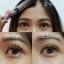 มาสคาร่าตาโต Hengfang Mascara Volume Clubbing ราคาปลีก 50 บาท / ราคาส่ง 40 บาท thumbnail 6