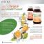 Vistra Bioflavonoids plus Rutin บรรเทาเส้นเลือดขอด thumbnail 3