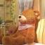 ตุ๊กตาหมีหลับ ตุ๊กตาตัวใหญ่ ขนาด 1.2 เมตร สีน้ำตาลเข้ม thumbnail 1
