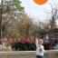 """ลูกโป่งจัมโบ้ สีส้ม ขนาด 24 นิ้ว - Round Jumbo Balloon Orange 24"""" สำเนา thumbnail 2"""