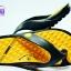 รองเท้าแตะ GAMBOL แกมโบล รุ่น GM 41050 สีส้ม เบอร์ 4-9 thumbnail 4