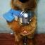 ตุ๊กตาหมีถือไมค์ มีเสียงเพลง เต้นได้ ปากขยับได้ (มาใหม่ล่าสุด) thumbnail 2