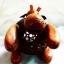 โคมไฟกะลามะพร้าวฮิปโปโปเตมัส Coconut Shell Lamp Hippo thumbnail 3