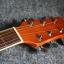 กีต้าร์ Guitar Mild AC-2C All Mohogany thumbnail 10
